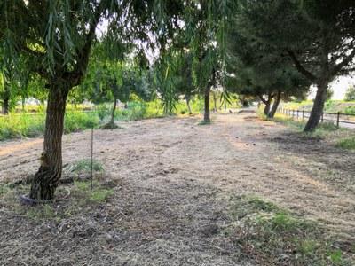 Parc del Reguer de Tornabous 2