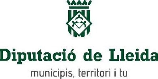 Subvencions Diputació de Lleida 2020
