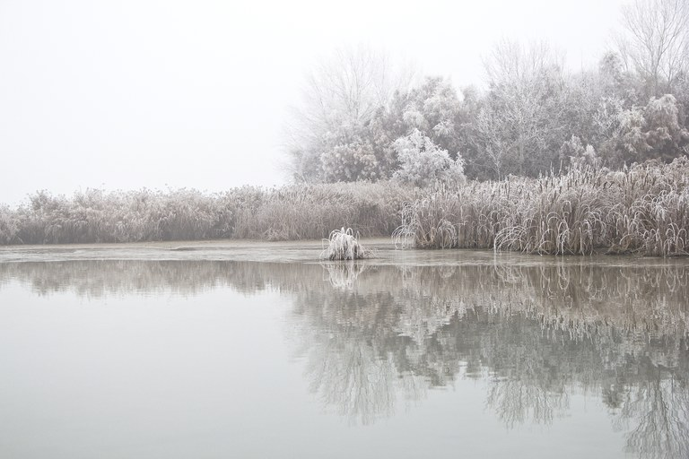 Primer premi 2018. Autor: Anna Gabernet. Títol de l'obra: Boira gebradora a l'estany d'Ivars i Vilasana.