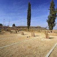 Zona enjardinada de la Guàrdia d'Urgell 2